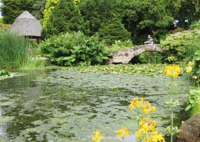 Photo: Ness Botanic Gardens