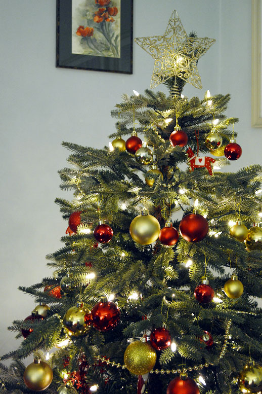 Photo: The Christmas tree at Baker's Cottage